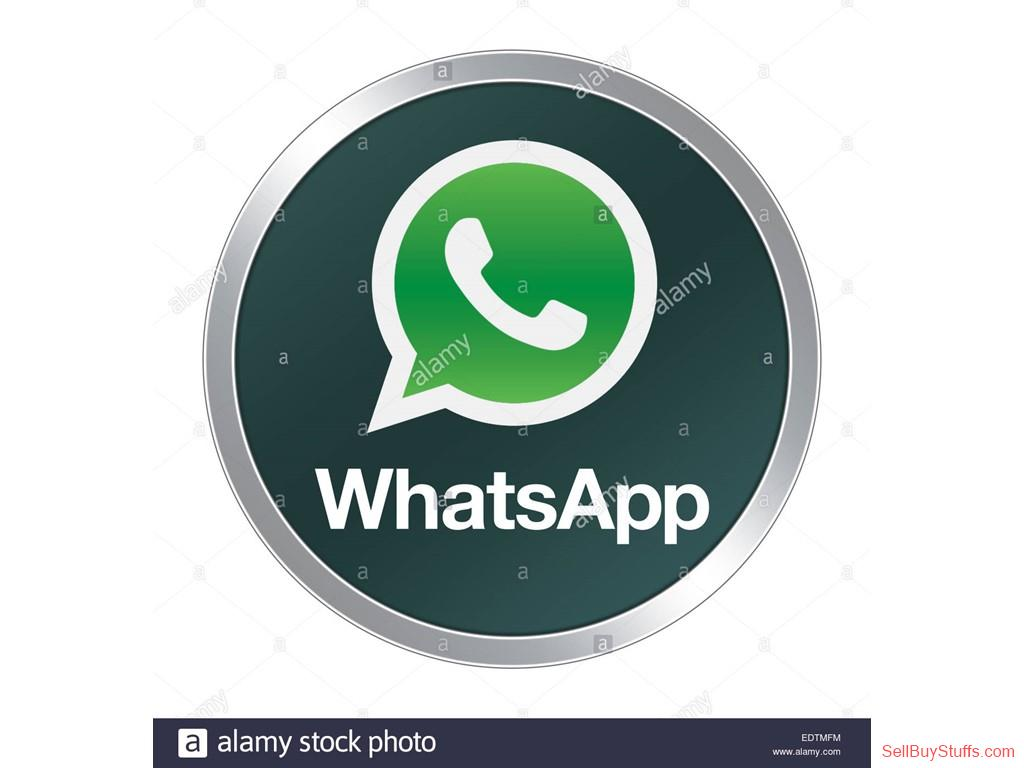 second hand/new: Bulk Whatsapp service for Software in Mumbai, Delhi
