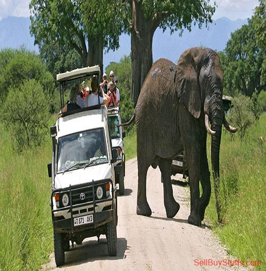 Almora East Africa Travel Company