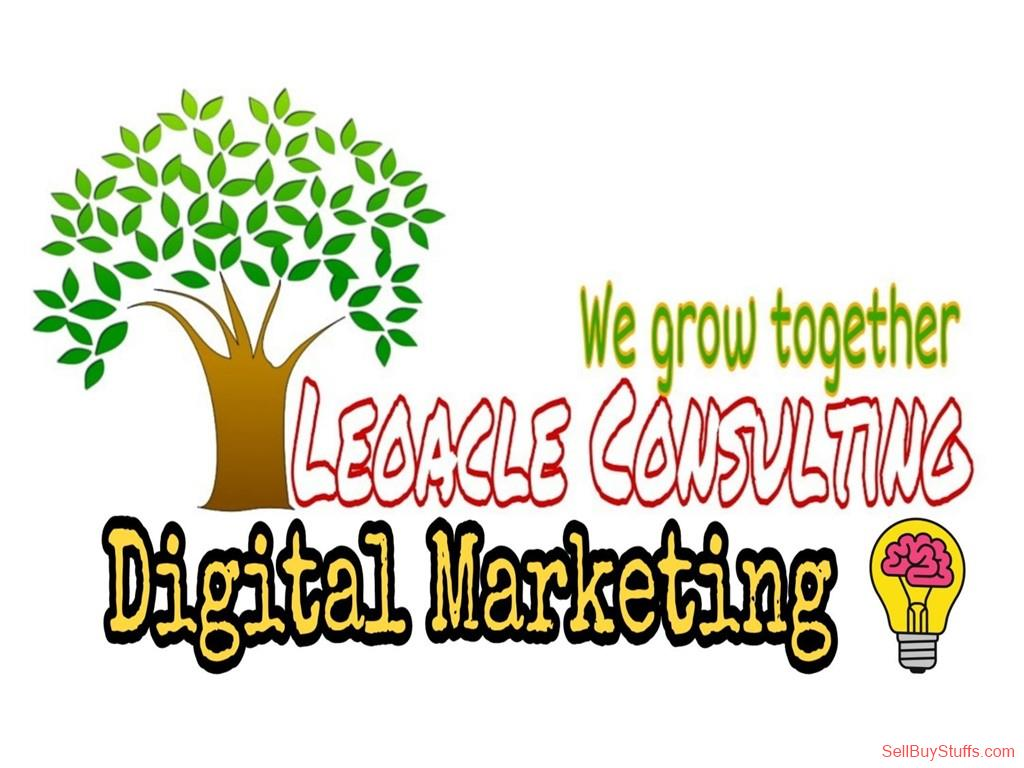 Delhi Email Marketing from Leoacle Consultancy